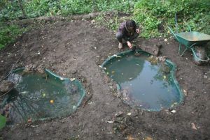 Installing ponds