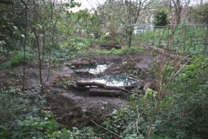 Ponds at Bethnal Green NR