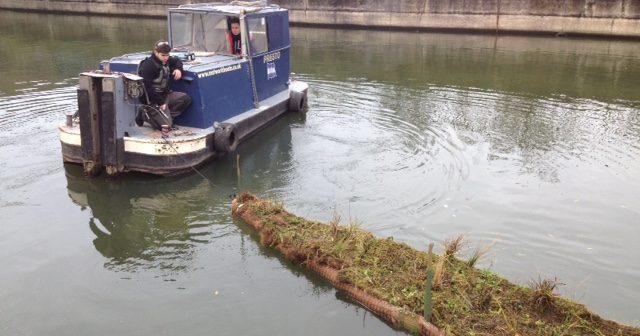 Launching floating ecosystem