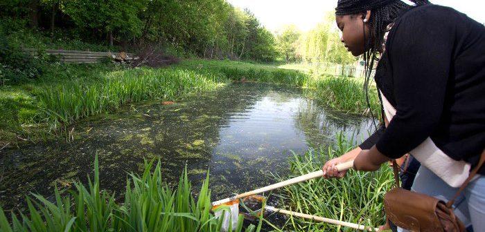 Pond-dipping at Mudchute