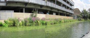 River Lea, Three Mills