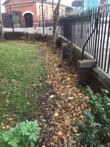 Matilda House boundary before planting