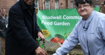 Mayor Rahman planting tree