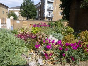 Winterton House Organic Garden rockery