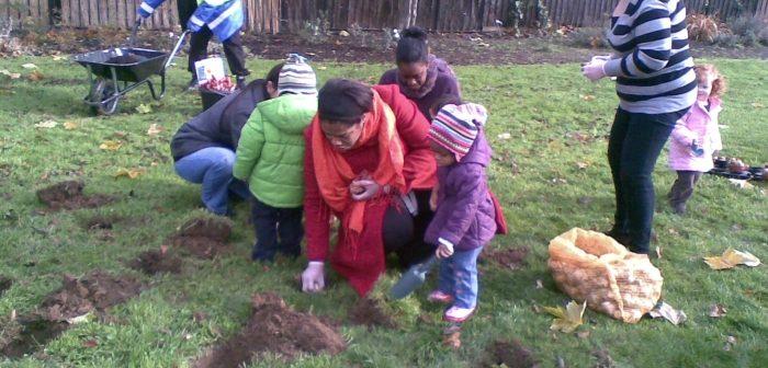 Planting bulbs at Selwyn Square