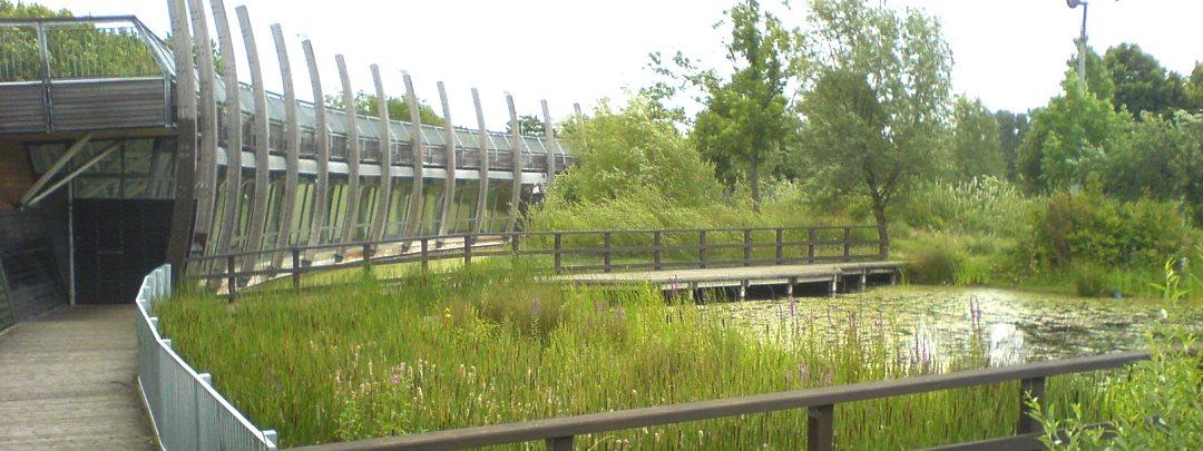 Ecology Park, Mile End Park