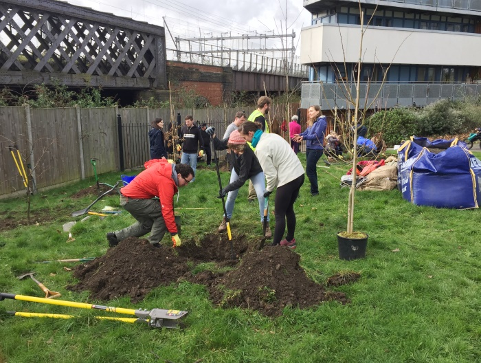 Tree planting at Meath Gardens