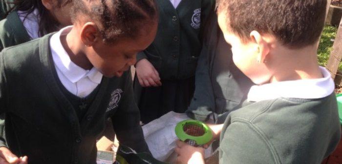 Children filling bird feeders