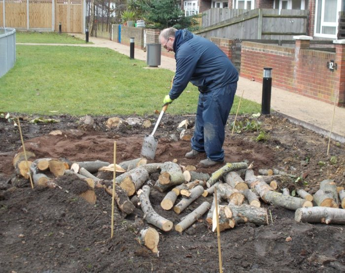 Burying logs for wildlife