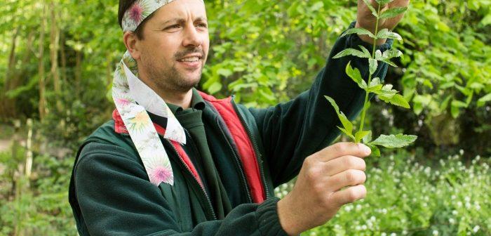 Ken Greenway with wild parsnip