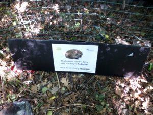 Hedgehog footprint survey tunnel