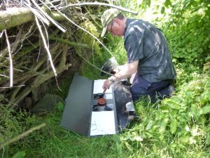 Inking pads in hedgehog survey tunnel