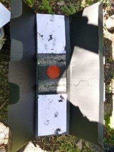 Hedgehog survey tunnel tracking plate