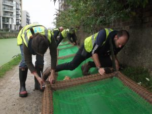 Constructing a vegetated raft