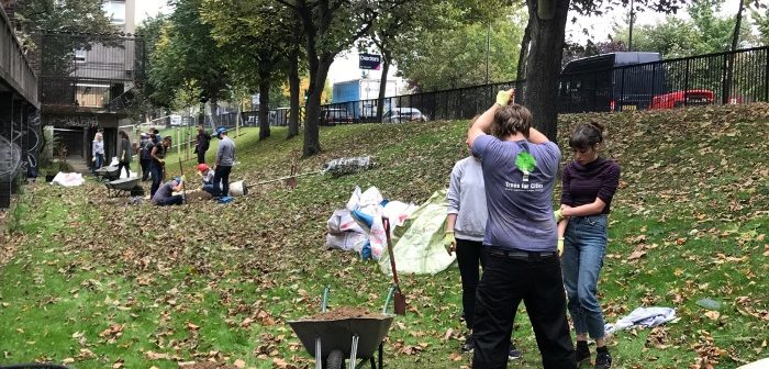 Tree planting at Gordon House