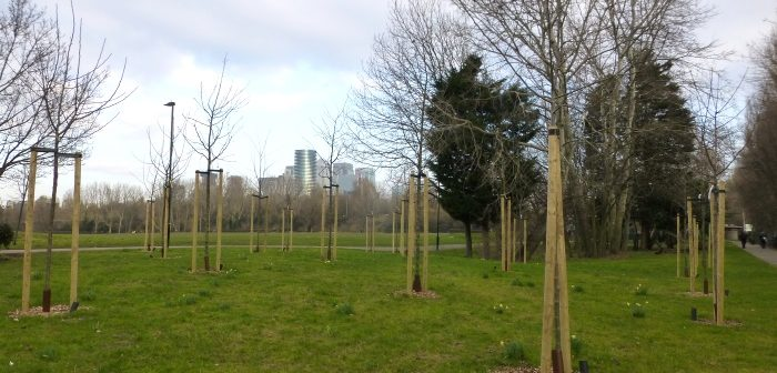 Orchard in Millwall Park