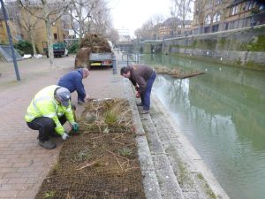 Fitting vegetated mats to rafts