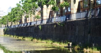 Floating vegetated islands in Wapping Canal