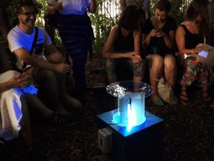 Moth trapping event