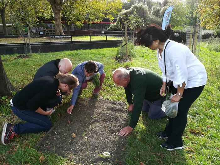 Wildflower training course