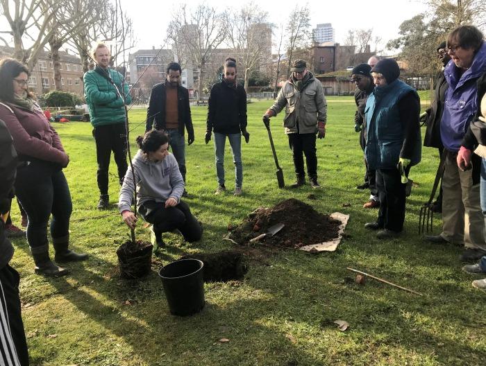 Tree planting in Bob's Park