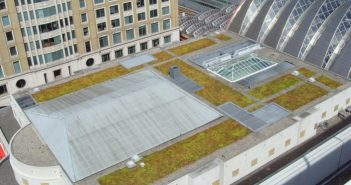 Green roof at Canary Wharf