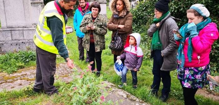 Guided walk in Tower Hamlets Cemetery Park