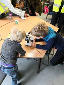 Children examining moths