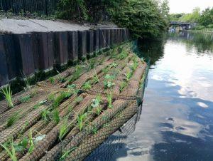 Floating vegetated raft
