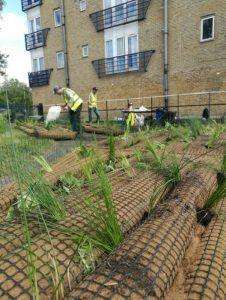Vegetated floating rafts ready to launch