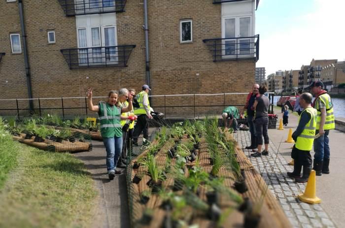 Lower Regents Coalition volunteers with floating planter