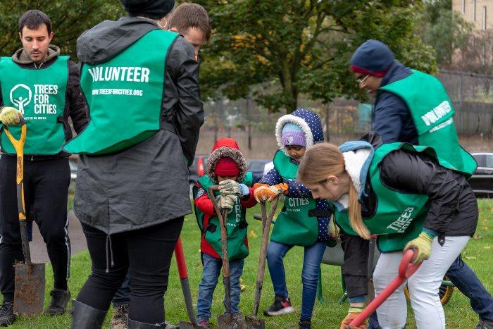Children planting trees