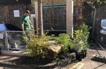 Planting on Holland Estate