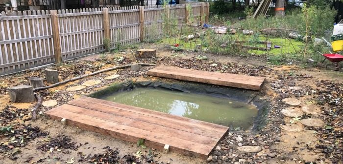New pond at Olga Primary School