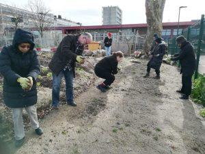 Volunteers sowing wildflower seed
