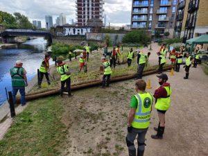 Volunteers working on vegetated rafts beside canal