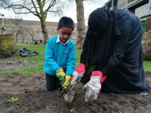 Photo of people planting bulbs