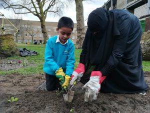 Photo of people planting bulbs