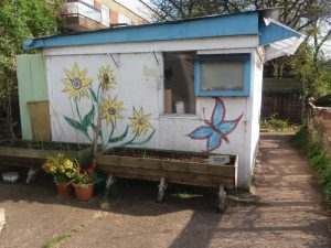 Photo of planter in front of shed