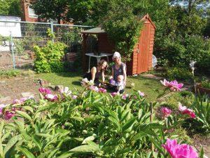 Photo of a family in a garden