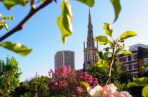 St Mary's Church from Cable Street Community Garden with spring blossom