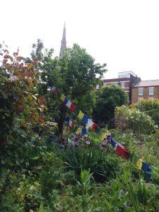 Photo of prayer flags on an allotment garden