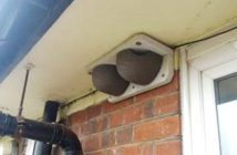 Artificial house martin nests